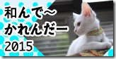 nagonde-2015_bn01-シマシマベランダ組里親募集/ひもあそび