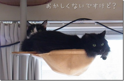 R01451400001_thumb-くるっピー★ライト棒セット発売&入荷