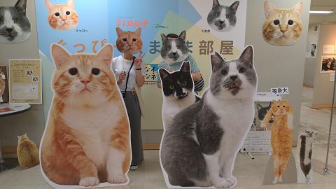 resize0210-京王百貨店みんなイヌみんなネコ★お礼