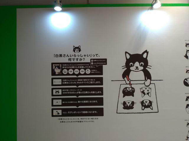 P_20200214_171541_vHDR_Auto-640x480-ちよだ猫まつり2020ありがとうございました/ヨロコブラ・ディスコテック発売