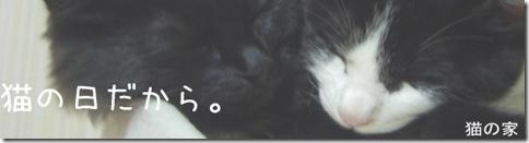 2011nekonohi-猫の日キネン・第二回くるっピーまつり?ありがとうございましたm(_ _)m