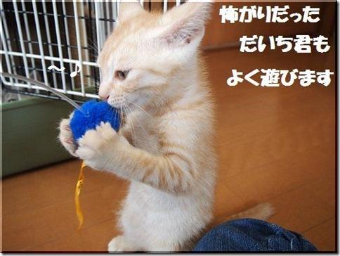 2012062407_thumb-新作ご紹介 その2