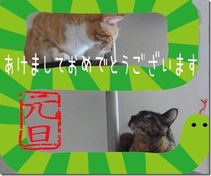 2013_thumb-謹賀新年