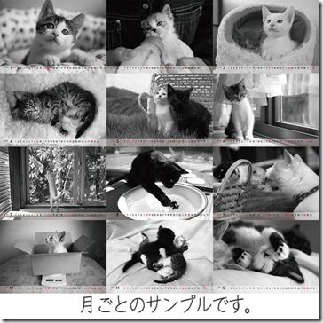 2014calender_thumb-志乃企画★モノクロカレンダーカード2014