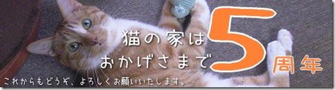 5years-猫の家5周年記念企画はじまります。