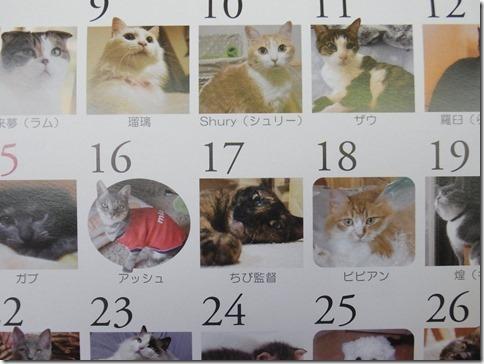 R0012536_thumb-和んで~カレンダー2014★写真受付開始