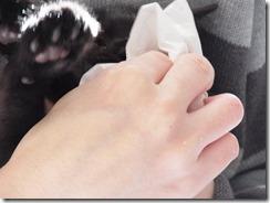 R0029600_thumb-隊長、2回目ワクチンとウイルス検査★イヤイヤ隊長★