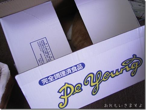 R0081358_thumb-明日は浅草橋。マルシェミニョン出店です。