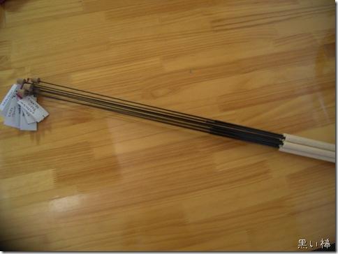 R0089143_thumb-新型スポーツ★キャットと黒い棒