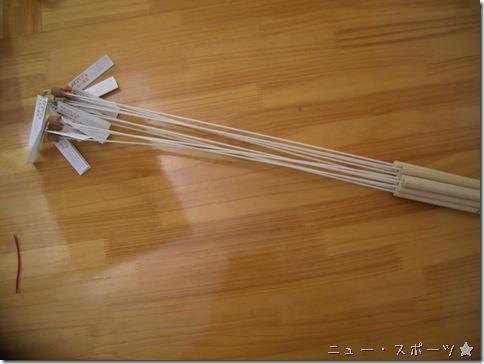 R0089145_thumb-新型スポーツ★キャットと黒い棒
