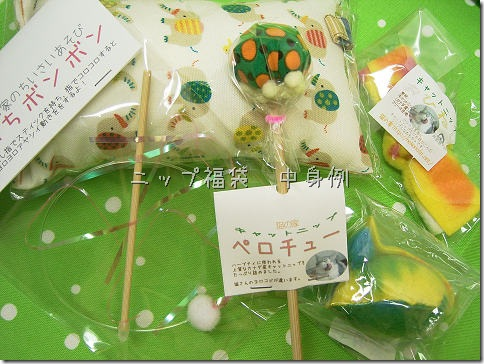 R00956090001_thumb-明日21日21時~夏の福袋発売。
