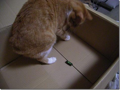 R0099136_thumb-冬の汐博2011クリエーターズマーケット1日目。