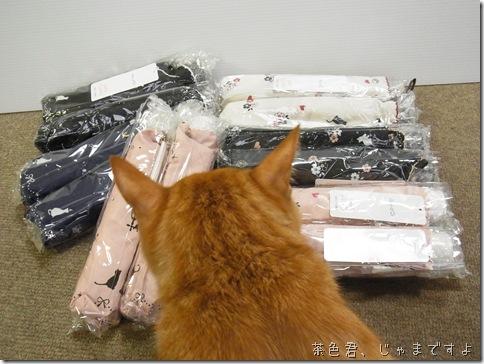 R0100008_thumb-猫柄折りたたみ傘の新入荷&再入荷