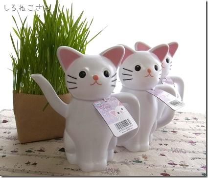 R0106547_thumb-アウトレット★白猫黒猫じょうろ