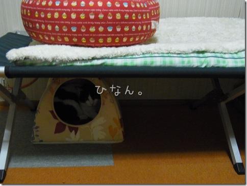 R0108734_thumb-台風いっか。