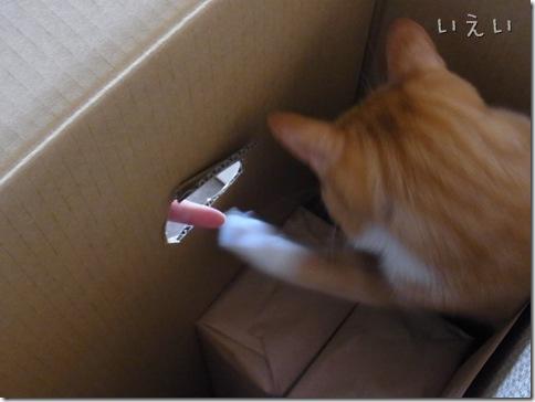 R0109011_thumb-茶色マンと大きい箱。