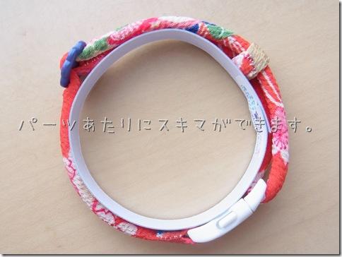 R0110021_thumb-首輪がいっぱい。