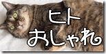 e0bc33ee8a3b-猫ジャケ。